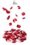 Rose petal Explosion